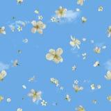Fleurs de ressort de vol sur le ciel photographie stock libre de droits