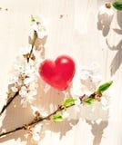 Fleurs de ressort et bougie rouge de coeur Photos libres de droits