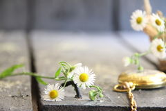 Fleurs de ressort et montre de poche sur la table en bois rustique Image libre de droits
