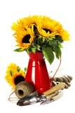 Fleurs de ressort et outils de jardin Photo stock