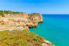 Fleurs de ressort sur la côte du Portugal Images stock