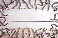 Fleurs de ressort sur le fond en bois Photos stock