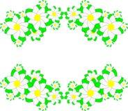 Fleurs de ressort sur les rubans verts Photographie stock libre de droits