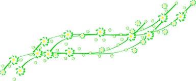 Fleurs de ressort sur les rubans verts Image stock