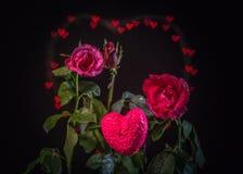 Fleurs de Rose à l'arrière-plan de coeur Photographie stock