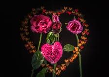 Fleurs de Rose à l'arrière-plan de coeur Images stock