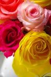 Fleurs de Rose Photos libres de droits