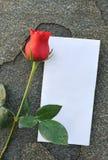 Fleurs de Rose illustration libre de droits