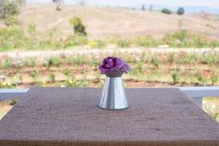 Fleurs de rose de pourpre dans le vase Image libre de droits