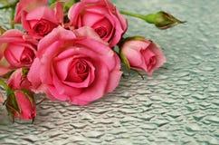 Fleurs de rose de rose sur le verre photos stock