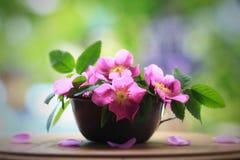 Fleurs de rose de rose montrées dans une tasse rustique de bidon photographie stock
