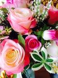 Fleurs de roses Photo stock