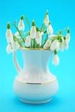 Fleurs de source Photo libre de droits