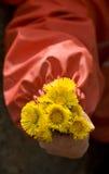 Fleurs de source dans la main de l'enfant Photographie stock libre de droits