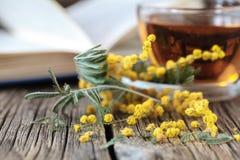 Fleurs de Sping et livres ouverts sur la table Photo libre de droits