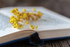 Fleurs de Sping et livres ouverts sur la table Images libres de droits