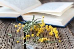 Fleurs de Sping et livres ouverts sur la table Image stock