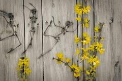 Fleurs de squelette de danse Images stock