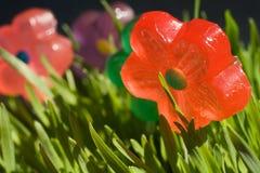 Fleurs de sucrerie Image libre de droits