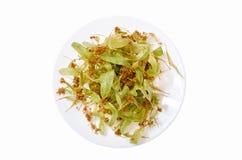 Fleurs de tilleul d'un plat blanc Images stock