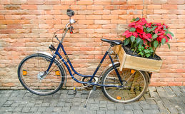 Fleurs de transport de bicyclette Images libres de droits