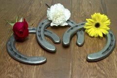 Fleurs de Triple Crown sur des fers à cheval Images libres de droits