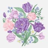 Fleurs de tulipes Photographie stock libre de droits