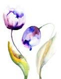 Fleurs de tulipes bleues Image libre de droits