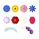 Fleurs de vecteur d'isolement sur le fond blanc Ensemble d'icônes florales colorées dans le style plat illustration de vecteur