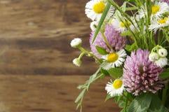 Fleurs de zone Photo libre de droits