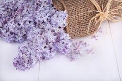 Fleurs des lilas Photo stock
