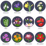 Fleurs des mois illustration stock
