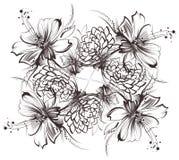 Fleurs, dessinant avec le crayon et le charbon simples sur le vieux livre blanc Photos libres de droits