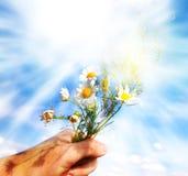 fleurs donnant la source Image stock