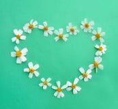 Fleurs en forme de coeur photo stock