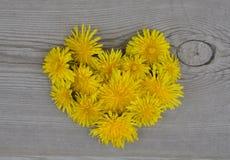 Fleurs en forme de coeur Image libre de droits
