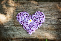 Fleurs en forme de coeur sur le conseil en bois Photos stock