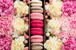 fleurs en gros plan et macarons Fond Images stock