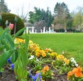 Fleurs en parc dans la ville Podebrady, République Tchèque Photo stock