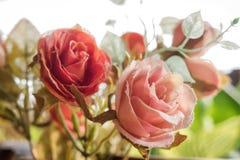 Fleurs en plastique avec le filtre de vintage Image libre de droits