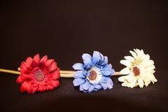 Fleurs en plastique fabriquées à la main, dans la couleur primaire photos libres de droits