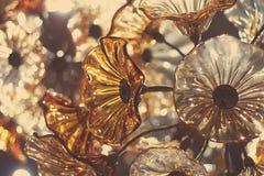 Fleurs en verre Photos libres de droits