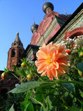 Fleurs et église Photographie stock libre de droits