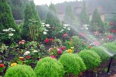 Fleurs et arbres Image stock