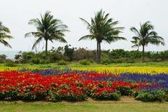 Fleurs et arbres Photographie stock