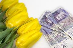 Fleurs et argent Images libres de droits