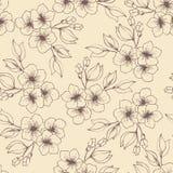 Fleurs et bourgeons Image libre de droits
