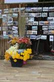 Fleurs et carte postale colorées Photo libre de droits