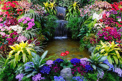 Fleurs et cascade à écriture ligne par ligne Image libre de droits