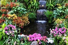 Fleurs et cascade à écriture ligne par ligne Photographie stock